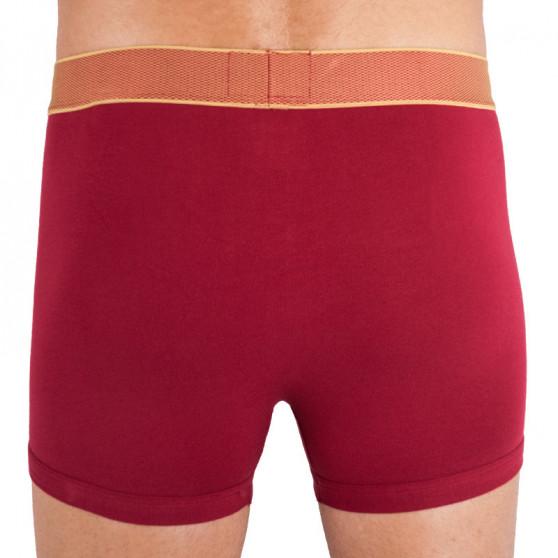Pánské boxerky Calvin Klein červené (NB1403A-1DR)