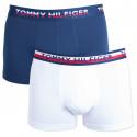 2PACK pánské boxerky Tommy Hilfiger vícebarevné (UM0UM00746 222)