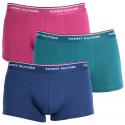3PACK pánské boxerky Tommy Hilfiger vícebarevné (1U87903841 685)