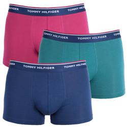 3PACK pánské boxerky Tommy Hilfiger vícebarevné (1U87903842 685)