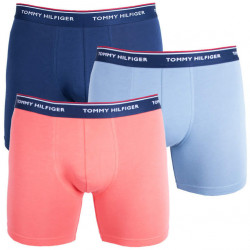 3PACK pánské boxerky Tommy Hilfiger vícebarevné (UM0UM00010 895)