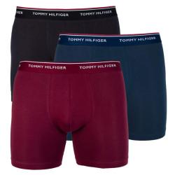 3PACK pánské boxerky Tommy Hilfiger vícebarevné (UM0UM00010 802)