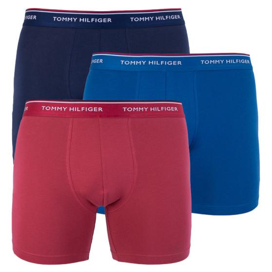 3PACK pánské boxerky Tommy Hilfiger vícebarevné (UM0UM00010 071)