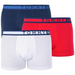 3PACK pánské boxerky Tommy Hilfiger vícebarevné (UM0UM01234 056)