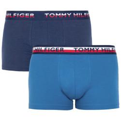 2PACK pánské boxerky Tommy Hilfiger vícebarevné (UM0UM00746 006)