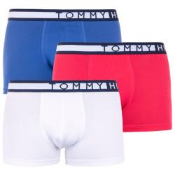 3PACK pánské boxerky Tommy Hilfiger vícebarevné (UM0UM01234 681)