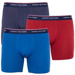 3PACK pánské boxerky Tommy Hilfiger vícebarevné (UM0UM00010 096)