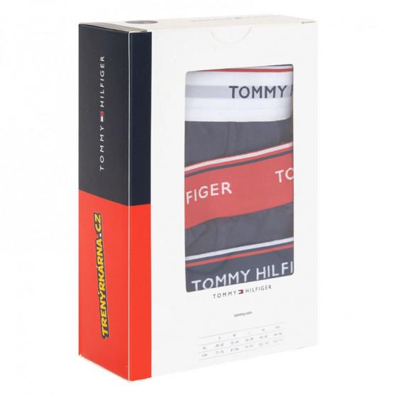 3PACK pánské slipy Tommy Hilfiger tmavě modré (1U87903766 904)