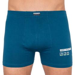 Pánské boxerky Andrie modré (PS 5254c)