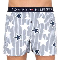 Pánské trenky Tommy Hilfiger vícebarevné (UM0UM01515 426)