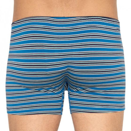 Pánské boxerky Andrie vícebarevné (PS 5434 C)
