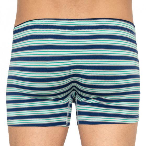 Pánské boxerky Andrie vícebarevné (PS 5434 B)