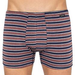 Pánské boxerky Andrie vícebarevné (PS 5434a)