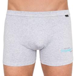 Pánské boxerky Andrie šedé (PS 5216c)