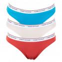 3PACK dámské kalhotky Tommy Hilfiger vícebarevné (UW0UW00043 032)