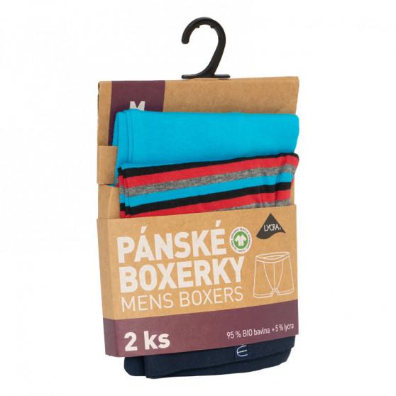 2PACK Pánské boxerky Molvy vícebarevné (KP-071-BEU)