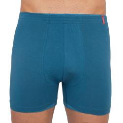 Pánské boxerky Andrie modré nadrozměr (PS 5260 C)