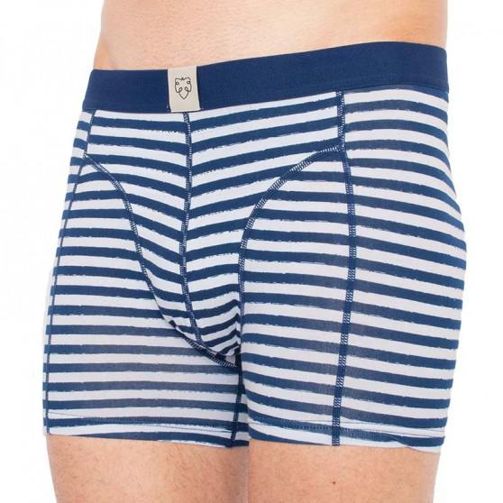 Pánské boxerky A-dam modré (FONS)