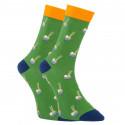 Veselé ponožky Dots Socks s košíčky (DTS-SX-444-Z)