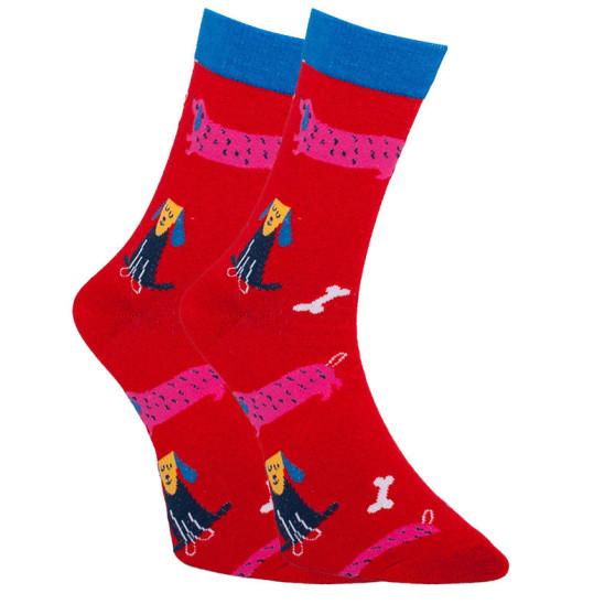 Veselé ponožky Dots Socks psi (DTS-SX-405-W)