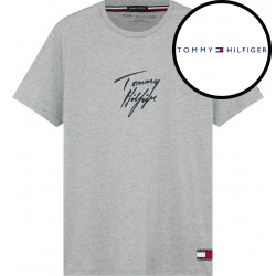 Pánské tričko Tommy Hilfiger šedé (UM0UM01787 P6S)