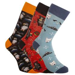 3PACK ponožky Bellinda vícebarevné (BE491004-308)