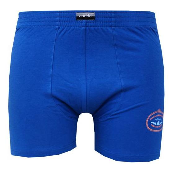Pánské boxerky Andrie modré (PS 5279 C)