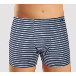 Pánské boxerky Andrie modré pruhy (PS 5339 A)