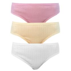 3PACK Dámské kalhotky Andrie vícebarevné (PS 2591 A)