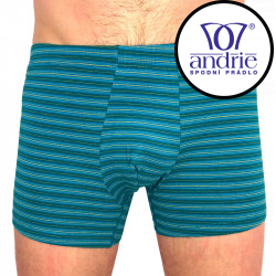 Pánské boxerky Andrie zelené (PS 5376 C)