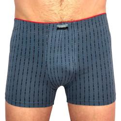 Pánské boxerky Andrie šedé (PS 5432 B)