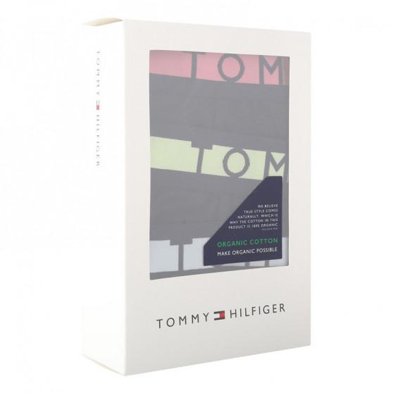 3PACK pánské slipy Tommy Hilfiger tmavě modré (UM0UM01227 0S5)