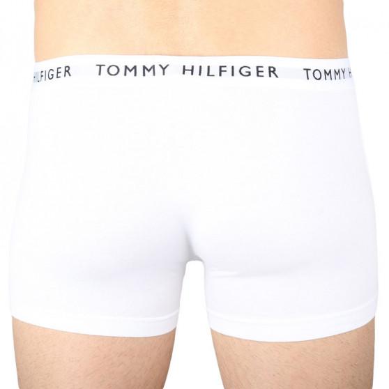 3PACK pánské boxerky Tommy Hilfiger vícebarevné (UM0UM02203 0WS)