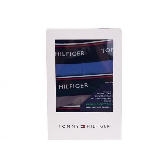 3PACK pánské boxerky Tommy Hilfiger vícebarevná (1U87903842 0VP)