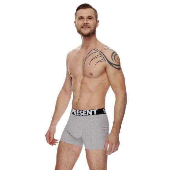 Pánské boxerky Represent šedé